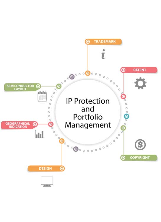 IP Protection and Portfolio Management