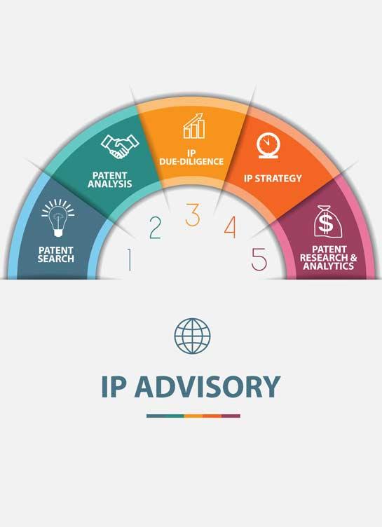 IP advisory